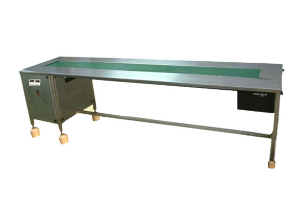 Auto Packing Conveyor